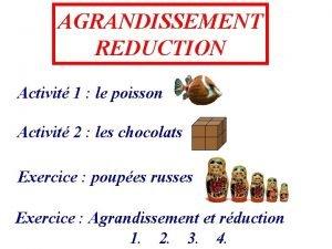 AGRANDISSEMENT REDUCTION Activit 1 le poisson Activit 2