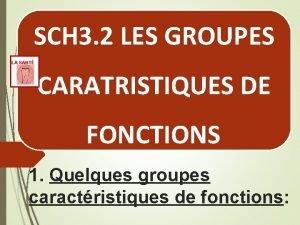SCH 3 2 LES GROUPES LA SANT CARATRISTIQUES