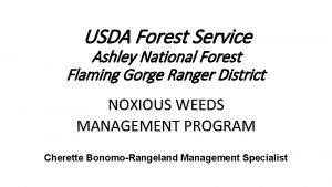 USDA Forest Service Ashley National Forest Flaming Gorge