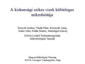 A kiskunsgi szikes vizek klnleges mikrobitja Borsodi Andrea