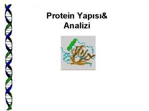 Protein Yaps Analizi Protein aileleri Protein lokalizasyonu protein