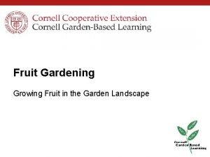 Fruit Gardening Growing Fruit in the Garden Landscape