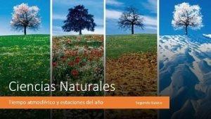 Ciencias Naturales Tiempo atmosfrico y estaciones del ao