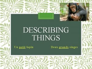 DESCRIBING THINGS Un petit lapin Deux grands singes