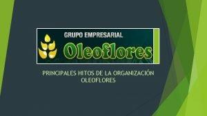 PRINCIPALES HITOS DE LA ORGANIZACIN OLEOFLORES Principales Hitos