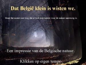 Dat Belgi klein is wisten we Maar dat