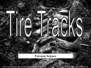 Forensic Science http www personal psu edujxm 22wemstmarksimagestiretracks