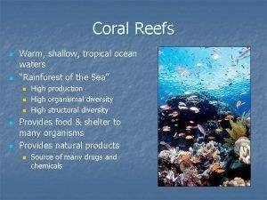 Coral Reefs n n Warm shallow tropical ocean