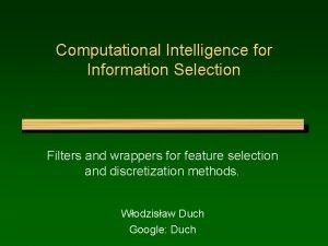 Computational Intelligence for Information Selection Filters and wrappers