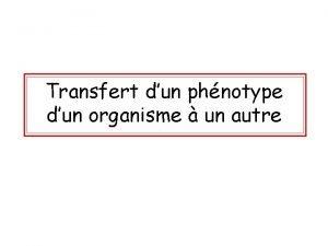 Transfert dun phnotype dun organisme un autre Introduction