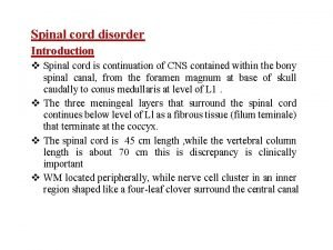 Spinal cord disorder Introduction Spinal cord is continuation