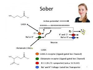 Sober Action potential GABA Cl K and Cl