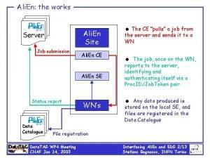 Ali En the works Ali En Site Server
