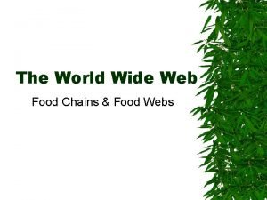 The World Wide Web Food Chains Food Webs