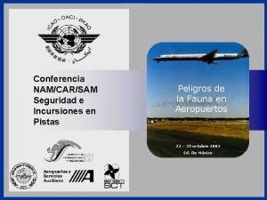 Conferencia NAMCARSAM Seguridad e Incursiones en Pistas Seguridad