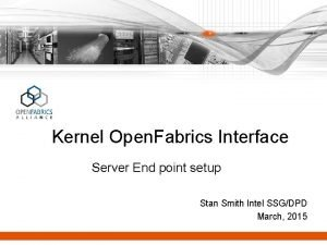 Kernel Open Fabrics Interface Server End point setup