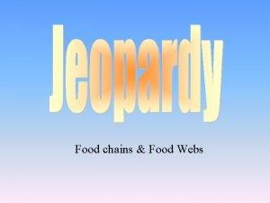 Food chains Food Webs Food Chain Energy Pyramid