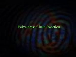 Polymerase Chain Reaction PCR Reaction Mix PCR Reaction