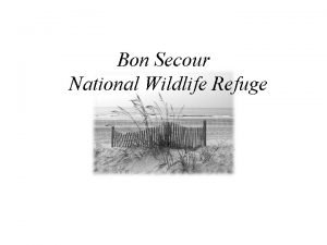 Bon Secour National Wildlife Refuge The Bon Secour