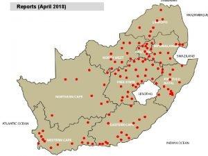 Reports April 2018 Internal parasites Roundworms April 2018