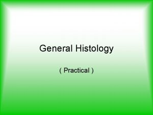 General Histology Practical Lab Five 4 Spleen The