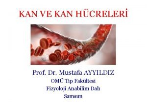 KAN VE KAN HCRELER Prof Dr Mustafa AYYILDIZ