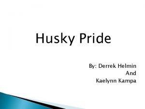 Husky Pride By Derrek Helmin And Kaelynn Kampa