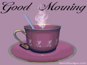 Good morning Caecum and Appendix Dr Qudsia Sultana