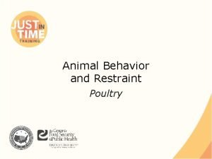 Animal Behavior and Restraint Poultry Poultry Birds reared