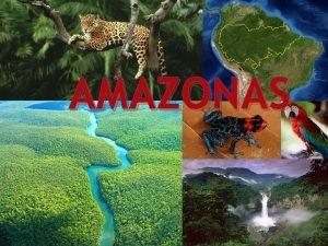 AMAZONAS Orsak till vad som har hnt Amazonas