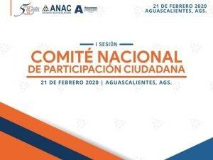 ACCIONES PARA FOMENTAR LA PARTICIPACIN CIUDADANA EN EL