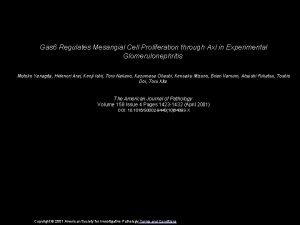 Gas 6 Regulates Mesangial Cell Proliferation through Axl