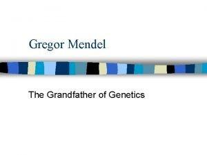 Gregor Mendel The Grandfather of Genetics Mendel Modern