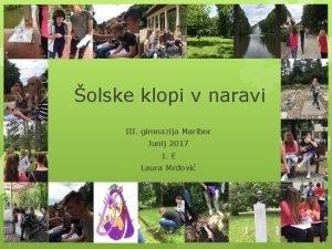 olske klopi v naravi III gimnazija Maribor Junij