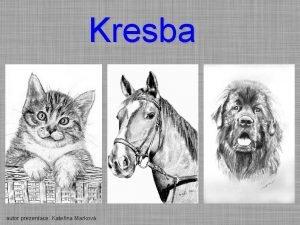 Kresba autor prezentace Kateina Markov Kresba Kresba je