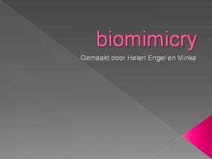 biomimicry Gemaakt door Helen Engel en Minke inleiding