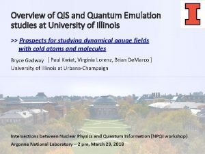 Overview of QIS and Quantum Emulation studies at
