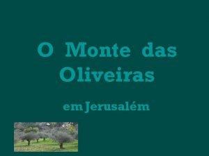 O Monte das Oliveiras em Jerusalm O Monte