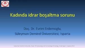 Kadnda idrar boaltma sorunu Do Dr Evrim Erdemoglu