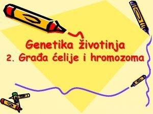 2 Genetika ivotinja Graa elije i hromozoma Graa