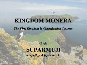 KINGDOM MONERA The First Kingdom in Classification Systems
