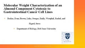 Molecular Weight Characterization of an Almond Component Cytotoxic