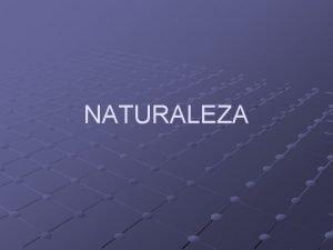 NATURALEZA LA NATURALEZA La naturaleza en su sentido