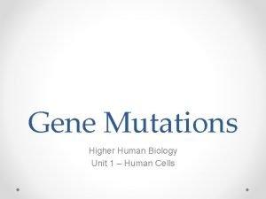 Gene Mutations Higher Human Biology Unit 1 Human