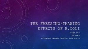 THE FREEZINGTHAWING EFFECTS OF E COLI NOLEN PAUL