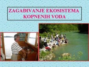 ZAGAIVANJE EKOSISTEMA KOPNENIH VODA Voda na Zemlji Voda