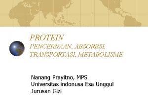 PROTEIN PENCERNAAN ABSORBSI TRANSPORTASI METABOLISME Nanang Prayitno MPS