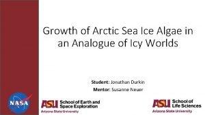 Growth of Arctic Sea Ice Algae in an