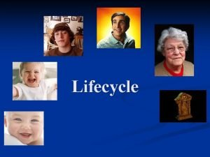 Lifecycle Product lifecycle Development stage Lots of market