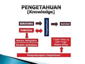 PENGETAHUAN BINATANG MANUSIA Merasa Mengindra Berpikir Berbahasa Pengetahuan